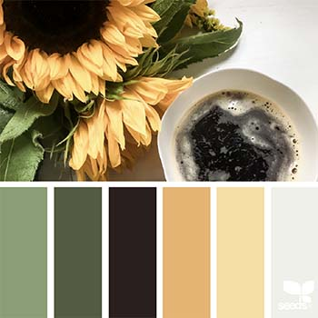 Image of Autumn/winter 2017 colours from design seeds in a blog post by forthefloorandmore.com