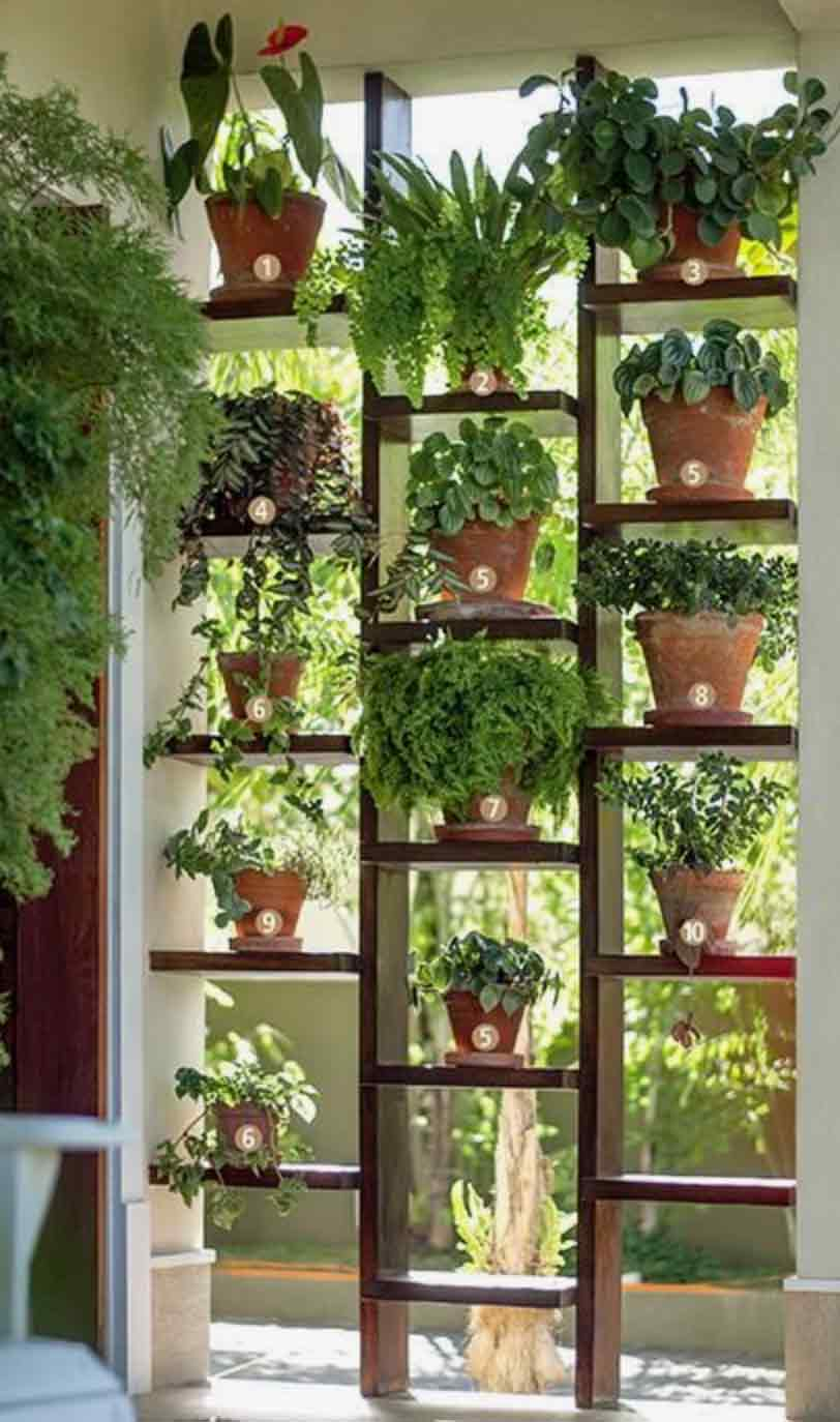 Image of a kitchen living wall used in a blog post by forthefloorandmore.com